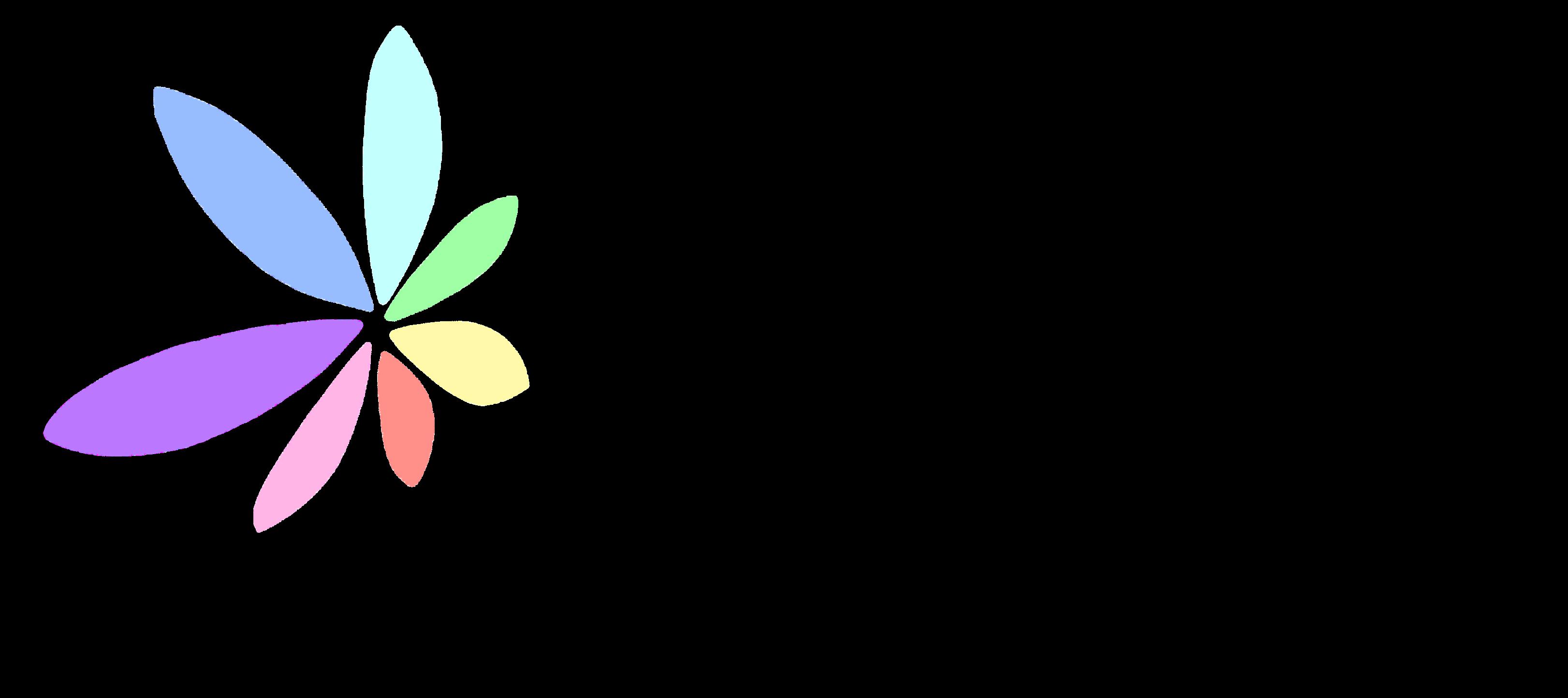 logo-ss